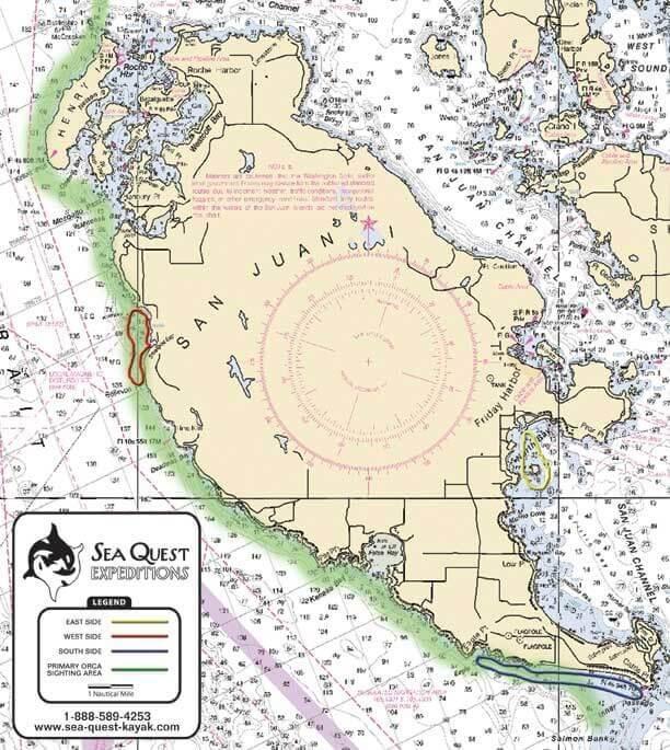 Half Day San Juan Island Kayak Tour Map